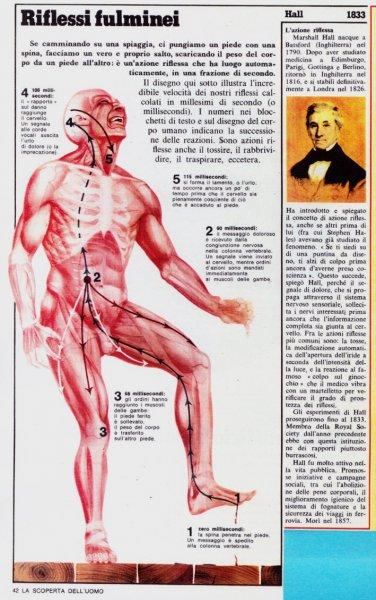 corpo-uomo