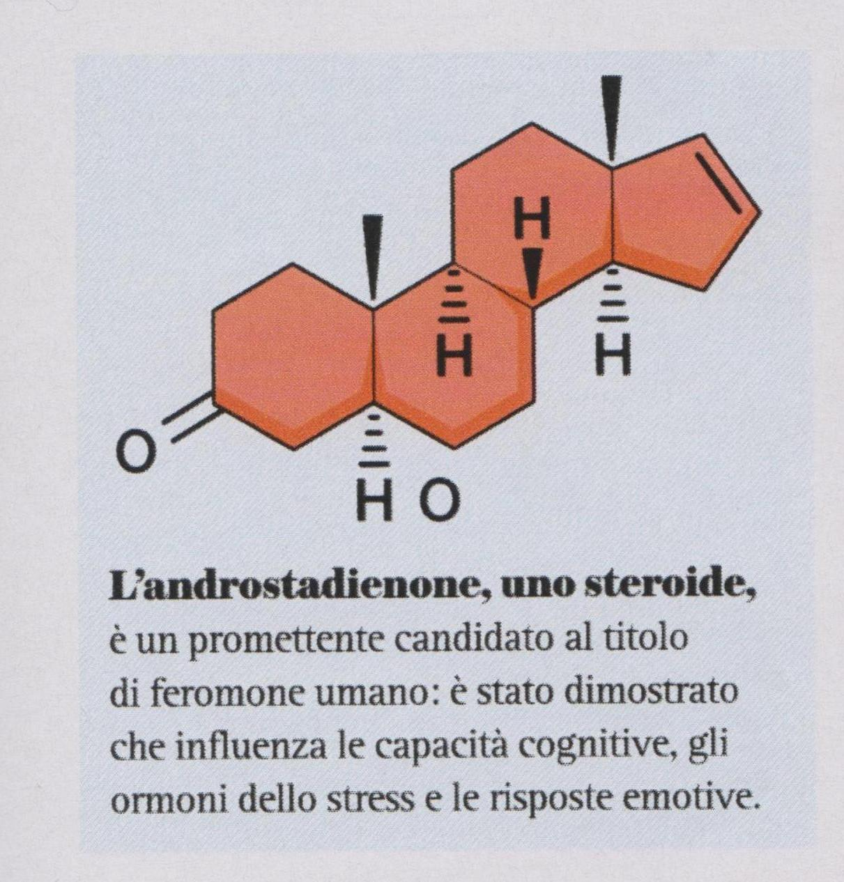 molecola-002
