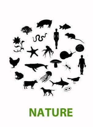 natura-dal-caos